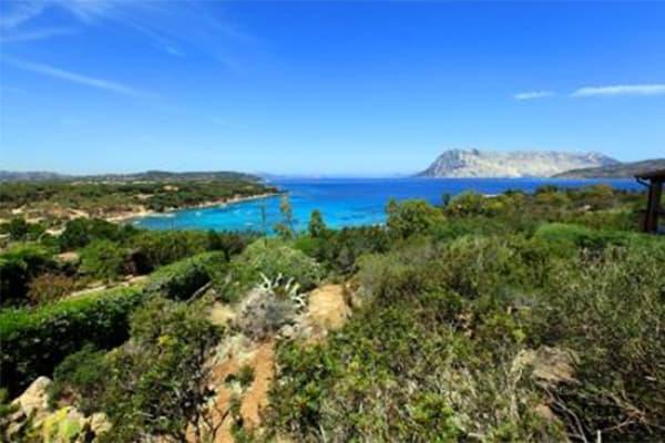 Capo Coda Cavallo: un angolo di paradiso per le vacanze e gli investimenti